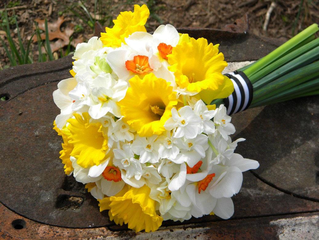Fehér, sárga nárcisz menyasszonyi csokor